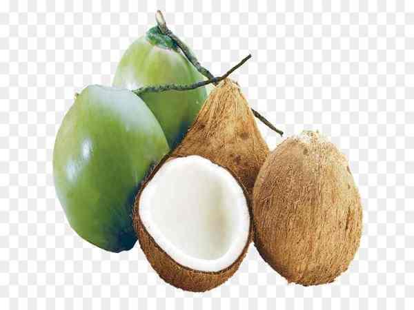 Mơ thấy quả dừa