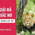 Mơ thấy sư tử nên đánh con nào? Giải mã giấc mơ chi tiết
