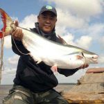 Mơ thấy bắt cá đánh con số gì có khả năng đổi đời?