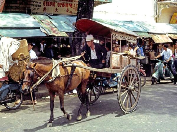 Nằm mơ thấy xe ngựa có điềm báo gì tốt hay xấu